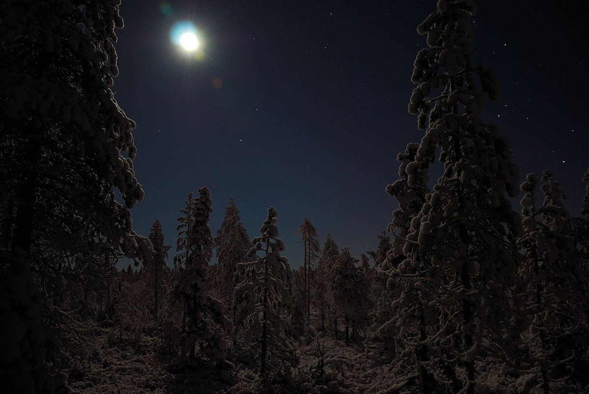 http://www.gerald-zojer.com/blog/wp-content/flagallery/finnish-lapland-in-winter/lap_winter10_02.jpg