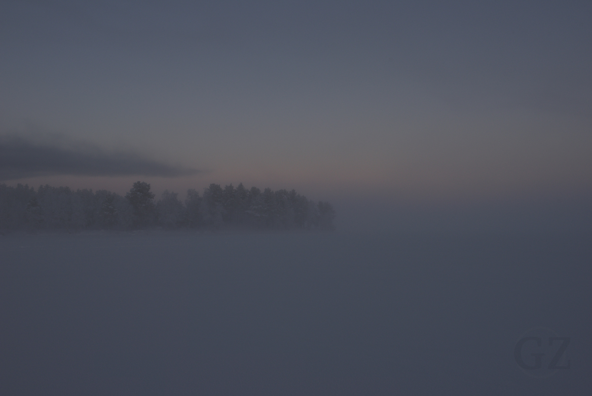frozen lake with fog and silhuettes of trees